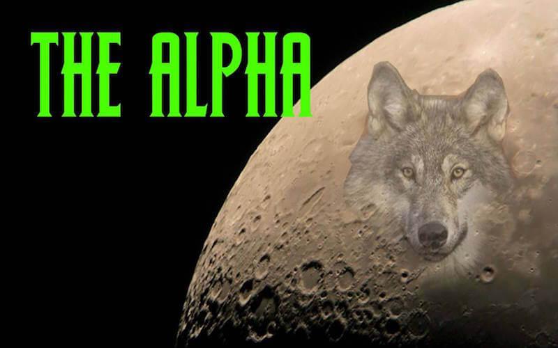 Install Alpha Kodi Addon